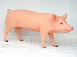 Pig Life Size Statue 5.5' Long