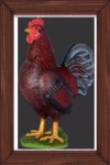 Life Size Rooster Resin Prop Display