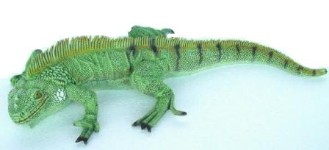 Small Life Like Iguana Lizard 1.5' Prop Display
