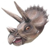 Triceratops Head 3' Life Like Wall Mount!