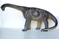 Camarasaurus 3' Life Like Dinosaur Prop Display