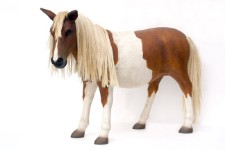 Shetland Pony Life Size Resin Statue  4' Horse Prop Display