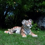 Life Size Bengal Tiger Cub Lying Down Statue