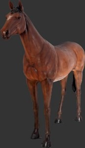Life Size Standing Resin Horse Statue Prop Display