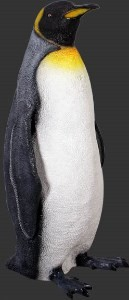 Realistic King Penguin 3' Resin Prop Display