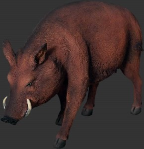 Life Size Wild Boar Resin Prop Display