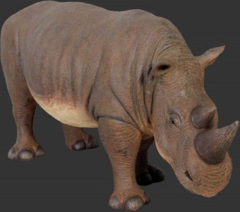 Life Size Baby Rhino Resin Prop Display