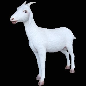 Goat  Life Size Resin Farm Animal Prop Display!  Over 3 Feet Tall!