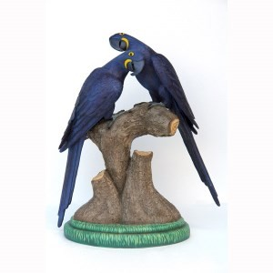 Hyacinth Macaw Lover