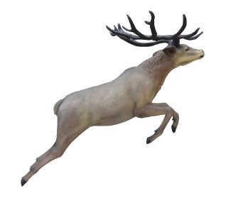 6' Life Like Flying Red Stag